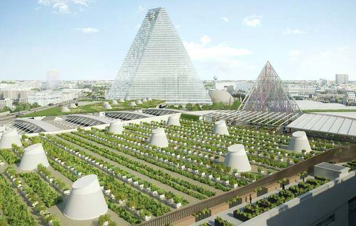 La toiture d'1,5 ha du nouveau hall 6 sera dédiée à l'agriculture urbaine.