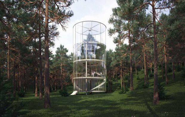 Kazakhstan : l\'arbre au cœur de la cabane de verre