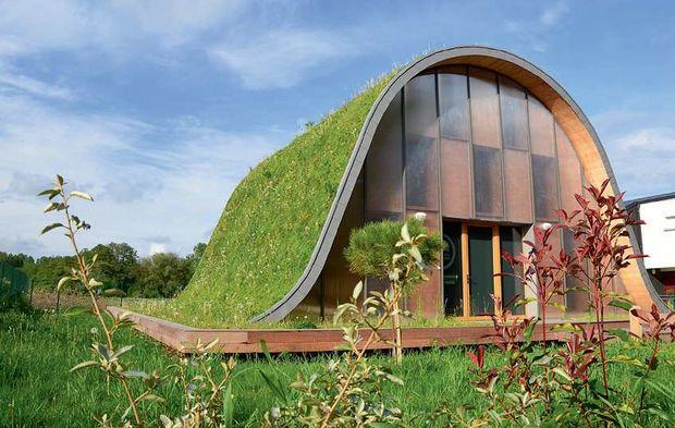 Végétalisation pour toitures en pente