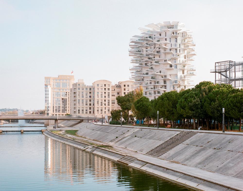 Maitrise D Oeuvre Montpellier l'arbre blanc éclot officiellement à montpellier