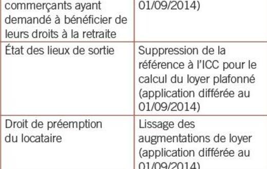 Baux Commerciaux La Loi Pinel A L Epreuve De La Realite