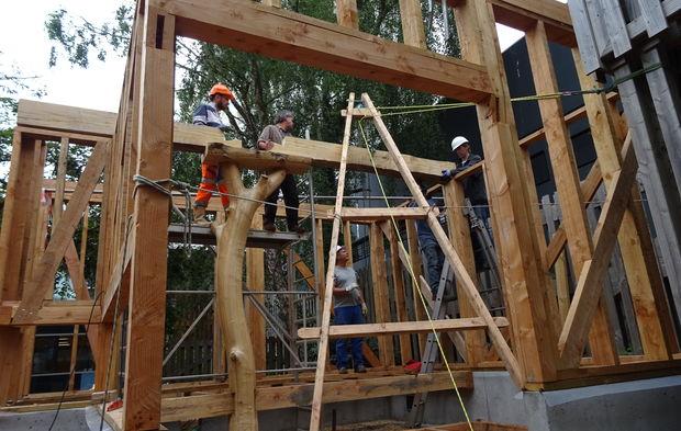 commande publique   des pistes pour valoriser le bois local et faire de l u2019insertion sociale de