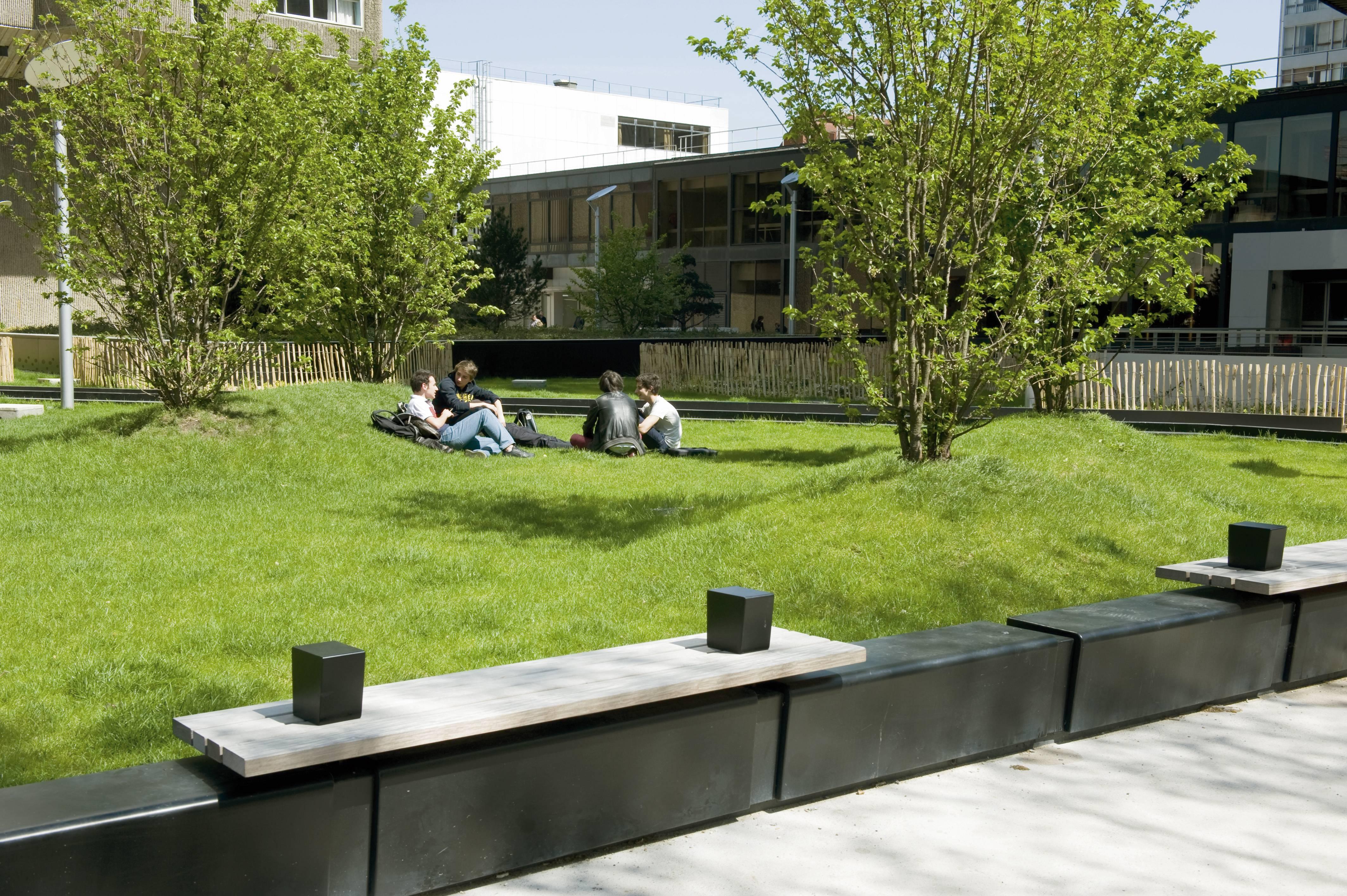 Espaces sur dalle : le défi d\'une mise au vert