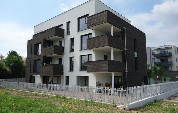 logement social et habitat participatif le pionnier atteint son but strasbourg. Black Bedroom Furniture Sets. Home Design Ideas